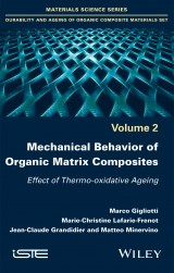 Mechanical Behavior of Organic Matrix Composites